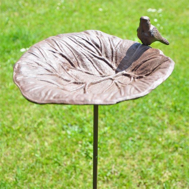 Bird FeederBath