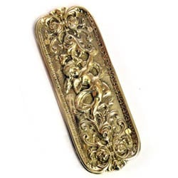Brass Cherub Fingerplate