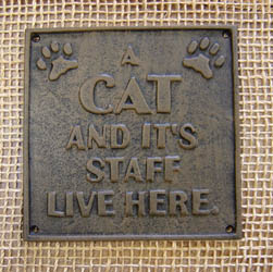 Cat's Staff Sign